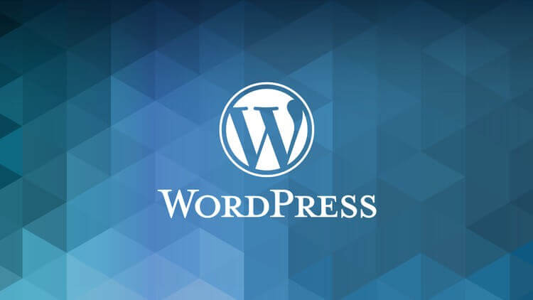 Top 5 Best Free Wordpress Plugins You Actually Need